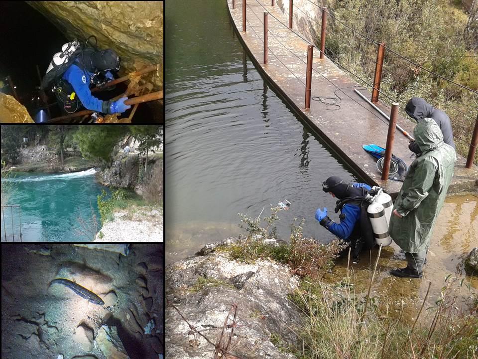 Projekt zaštite čovječje ribice na izvoru rijeke Omble