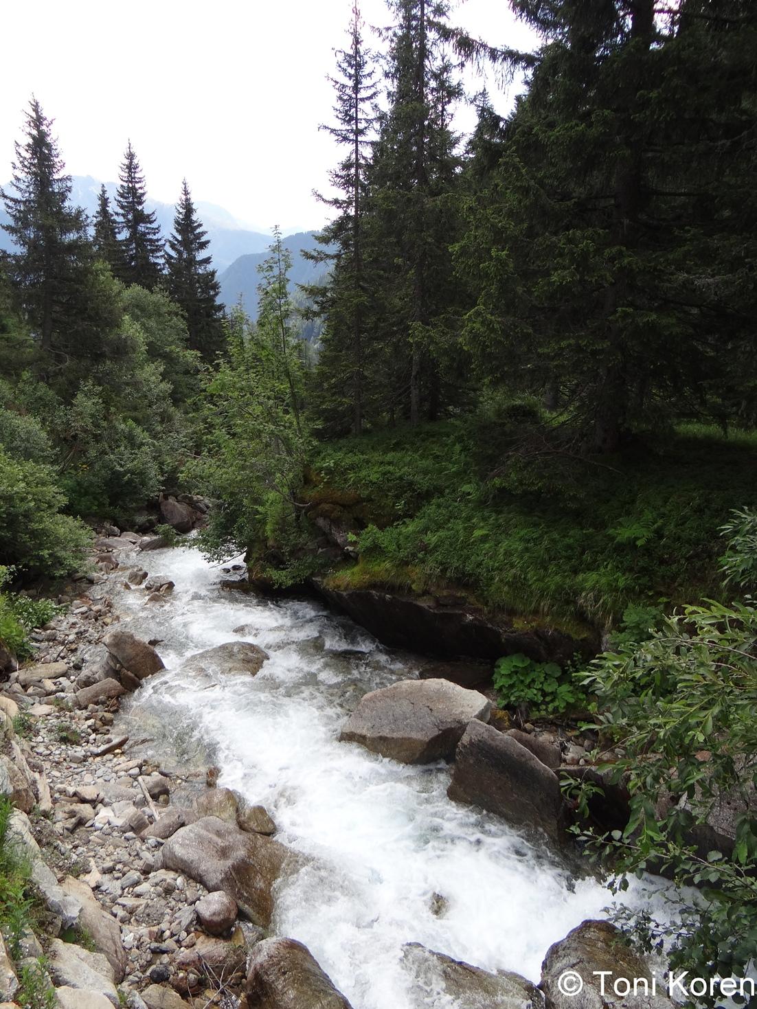 Dani bioraznolikosti u nacionalnom parku Visoke Ture u Austriji
